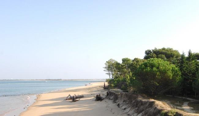 Hotel de Toiras - Beach